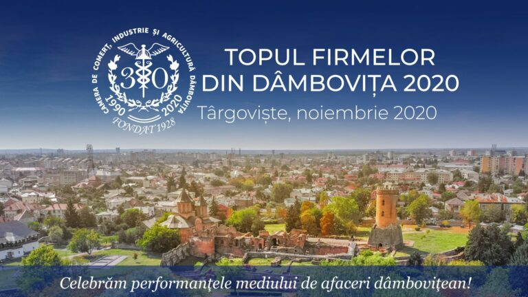 Read more about the article Topul firmelor din județul Dâmbovița 2020