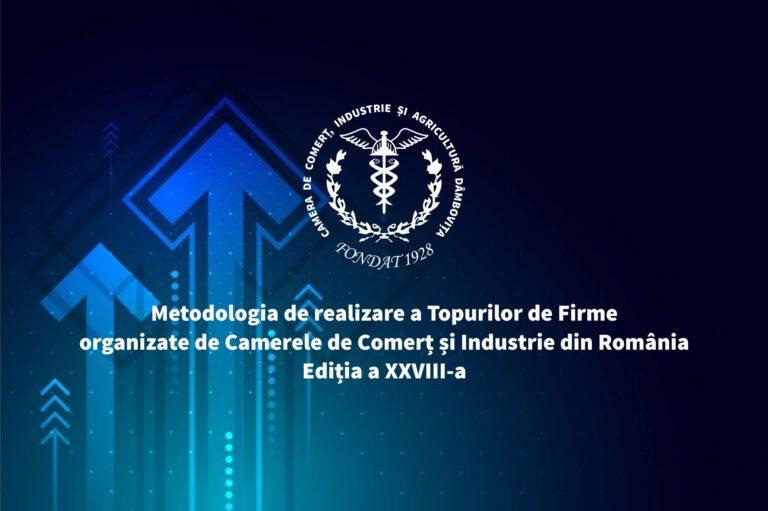 Read more about the article Topul firmelor din județul Dâmbovița 2021: Metodologia de realizare