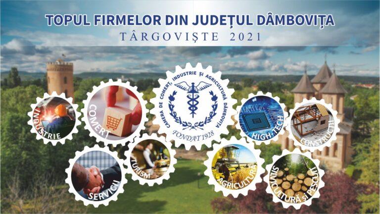 Read more about the article COMUNICAT PRESĂ: Topul Firmelor din Dâmbovița, ediția a XXVIII